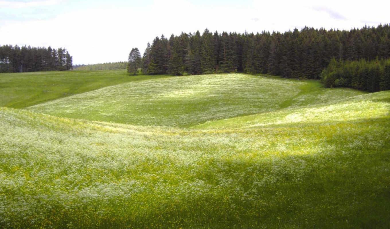 пейзажи, красивые, net,