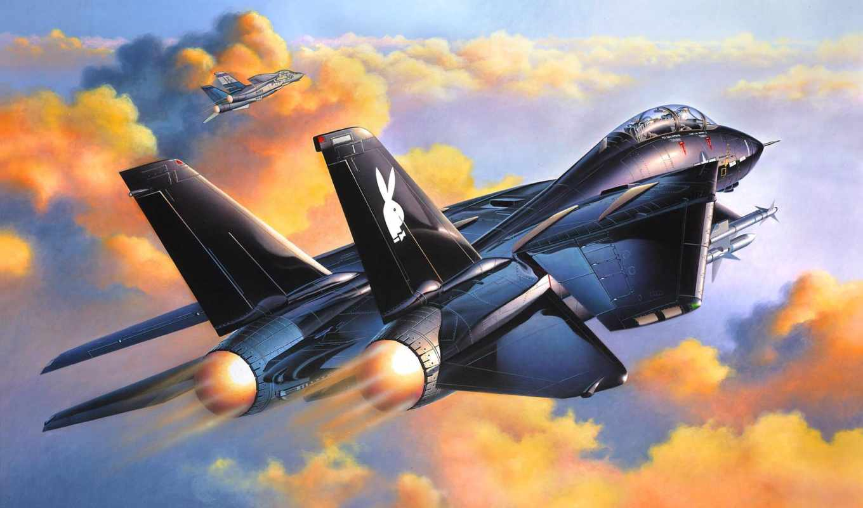 black, tomcat, авиация, истребитель, небо, картинка, арт,