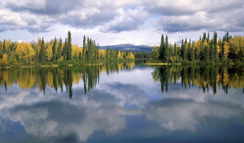 природа, water, красивые, пейзажи, природы, normal, trees, forest, lake, canada, clouds, reflection,