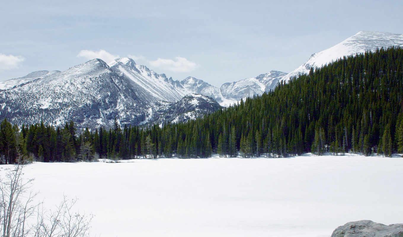 снег, лес, горы, вершины, снежные, искать, wallpapers,