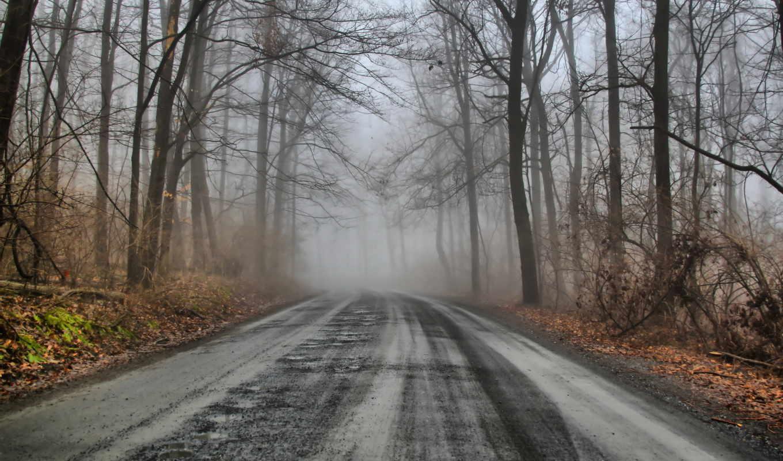 дорога, зимняя, место,