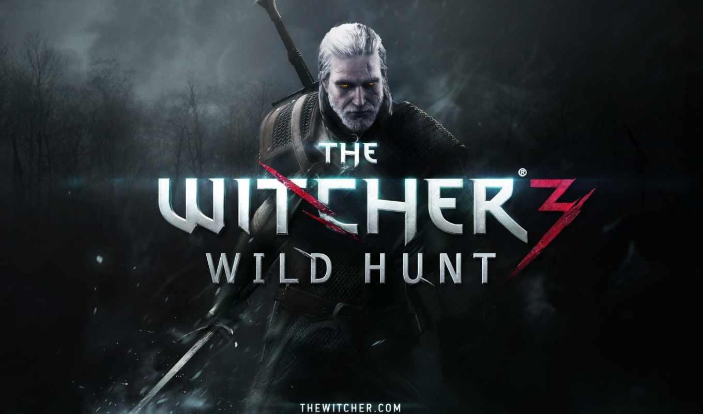 ведьмак, wild, hunt, kings, assassins,