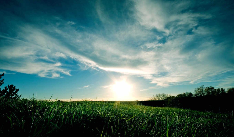 небо, sunset, облака, трава, grassy, солнце, закат, hd, wallpaper, wallpapers, синий, full, download,