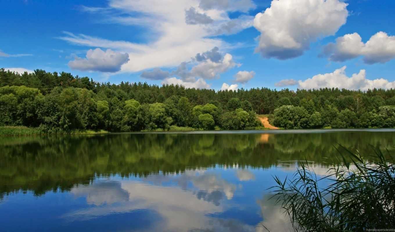 природа, прекрасная, качества, сказочно, хорошего,