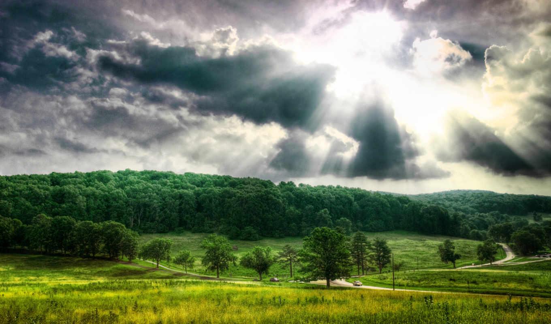 широкоформатные, окружает, лес, нас, jpeg, которая, природа, под,