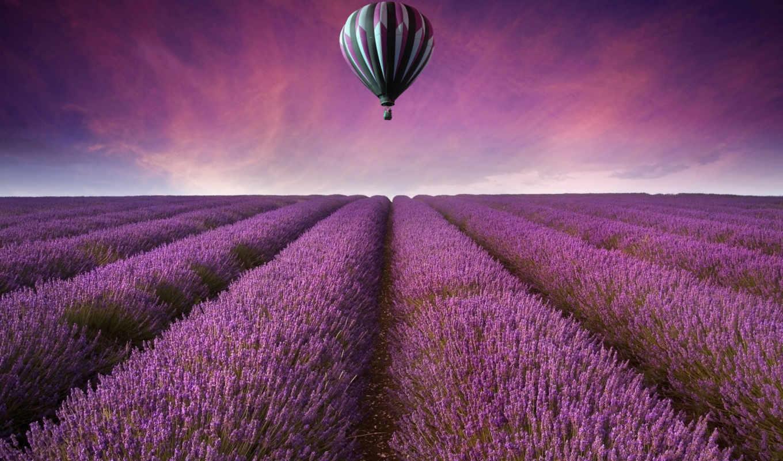 ,лаванда, aerial, природа, поле, картинка, Воздушный шар, небо