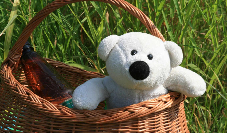 teddy, картинка, корзина, toy, доставка, медведь,