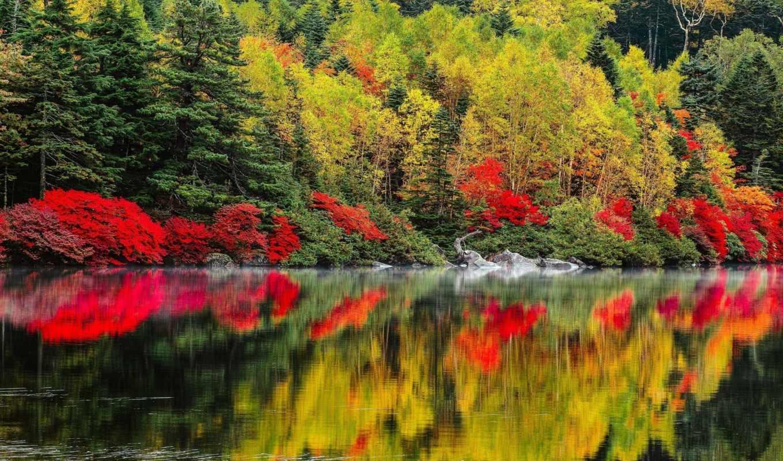 priroda, osen, ozero, пейзаж, разделе, деревя,