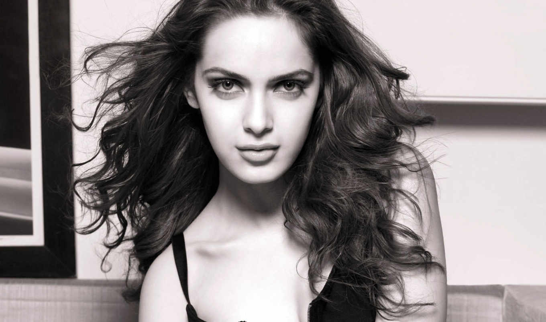актриса, bollywood, девушка, модель, celebrity, padamsee, shazahn,