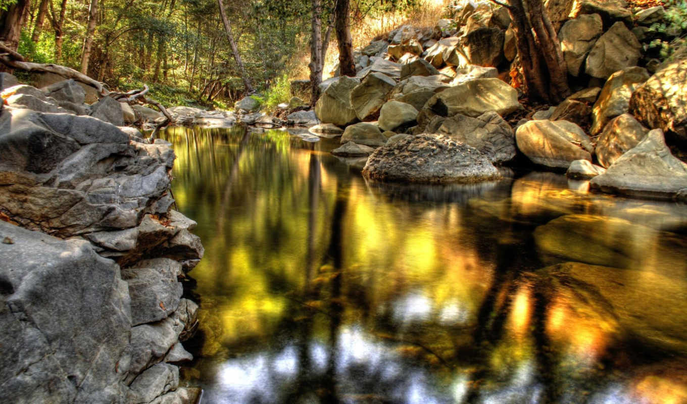 nature, stream, forest, desktop, download, камни, free, hdr, background,