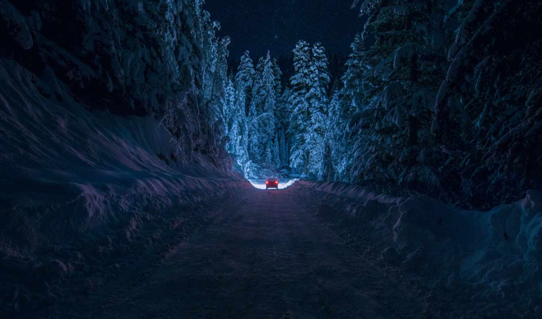 дорога, ночь, болгария, лес, снег, кюстендил, зима, inhiu, небо, свет, машина, звезды,