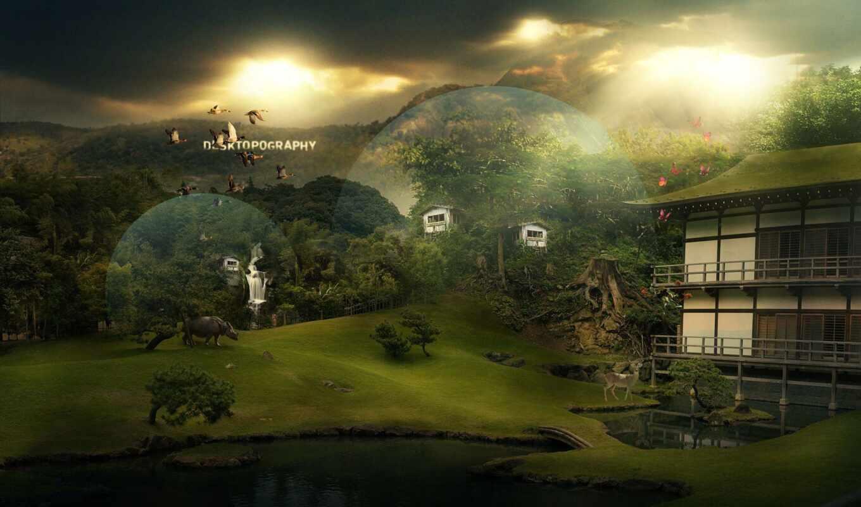 house, shirokoformatnyi, магия, animal, миро, fantasy, красивый, far, монитор, птица