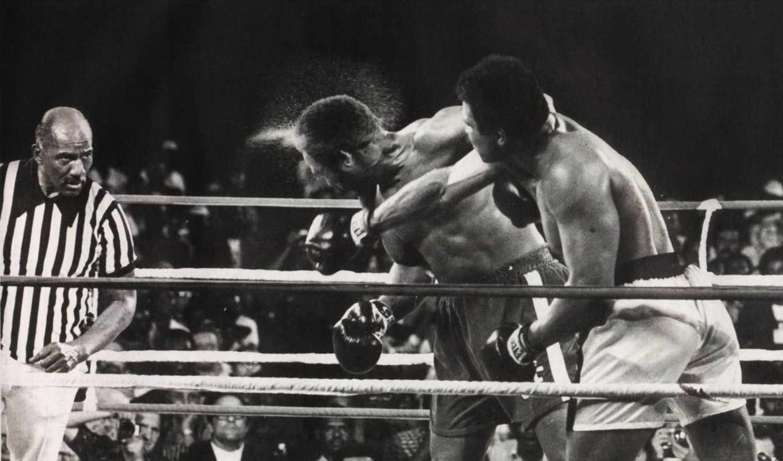 обои, бокс, удар, али, спорт, мохаммед, поединок,