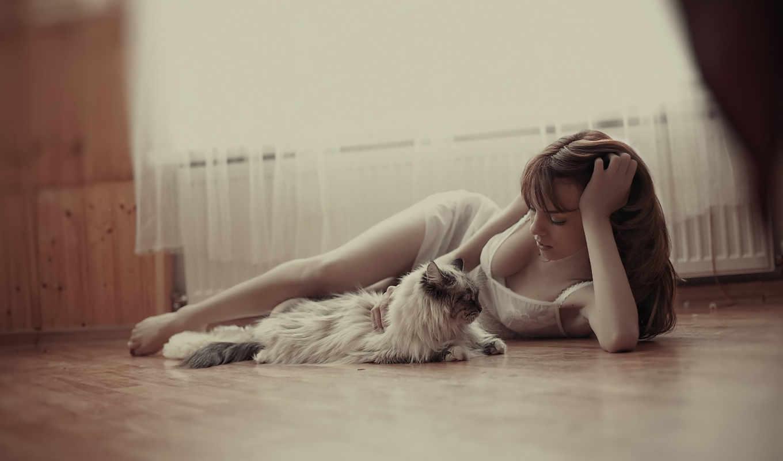 кот, девушка, девушки, нежность,