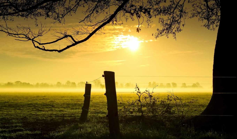 winter, słońca, сыны, мб, дек, туманные, пейзажи -, wschód, мар,