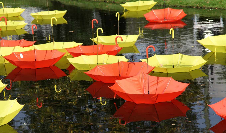после, под, зонтики, прохождение, разноцветные, дождем, дождя, liveinternet,