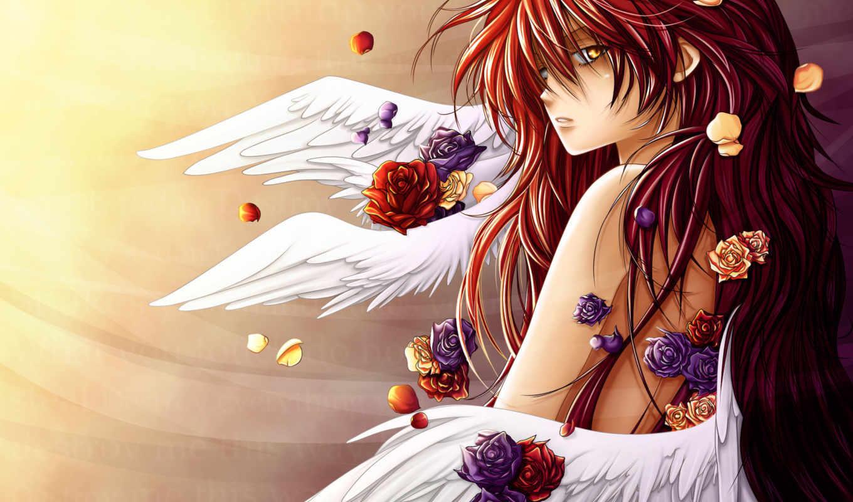 аниме, картинка, персонаж, эпизод, angel, cat, розах, крылья, изображение, crudelis, картинок, picsfab, фабрика, angelus, hair, похожие, вертикали, горизонтали, изображения, love, бесплатные, имеет,
