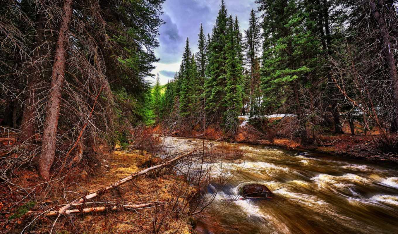 природа, landscapes,