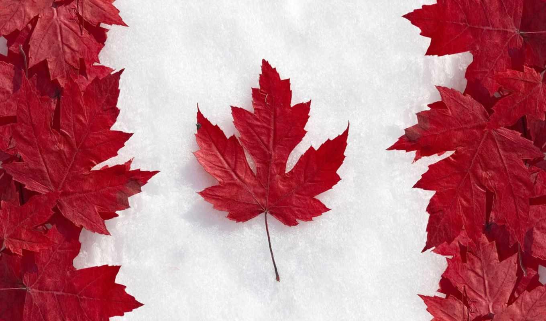 канаде, иммиграции, канады, февр, году, канаду,