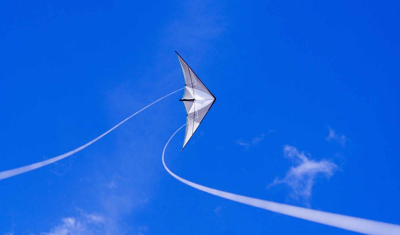 змей, air, blue, небо,