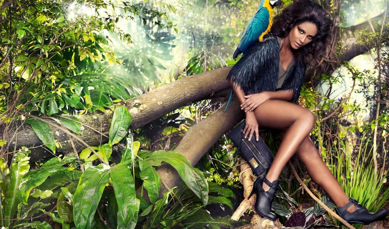 эмануэла, паула, jungle,