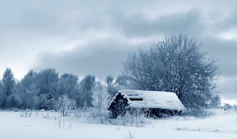 природа, winter, снег, зимняя, trees, дерево, изьба, пасмурно,
