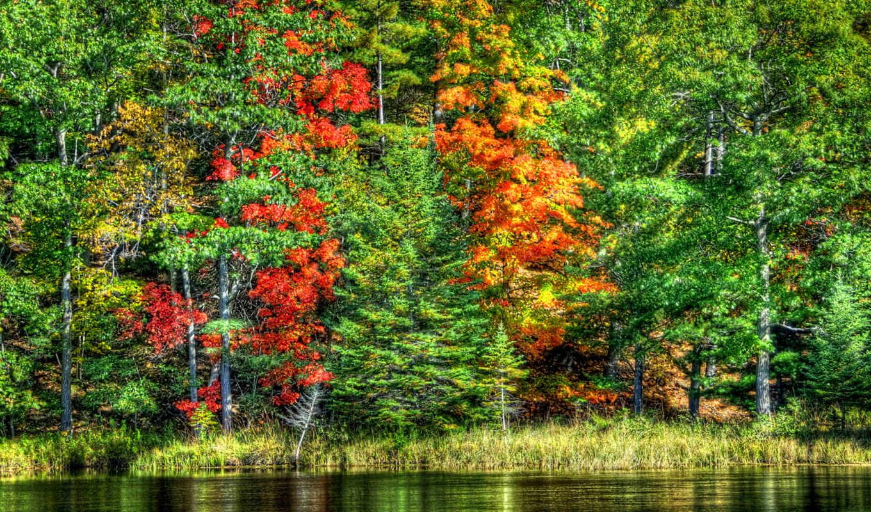 priroda, osen, ozero, деревя, пейзаж,