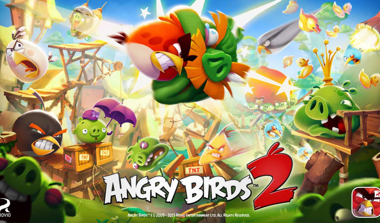 angry, birds, silver, птица, игры, июл, play, rovio,