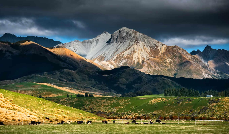 новая, зеландия, небо, горы, тучи, стадо, пастбище,