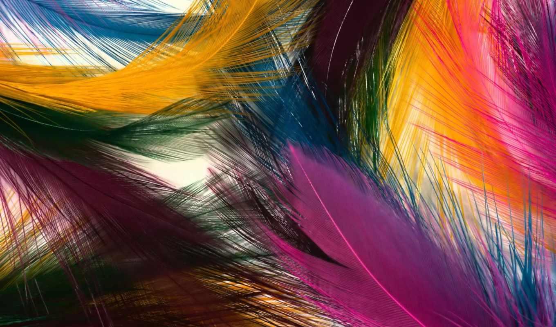 абстракция, абстракции, перья,