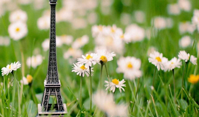 эйфелева, башня, трава, сувенир,
