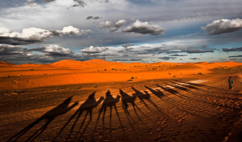 пустыня, караван,