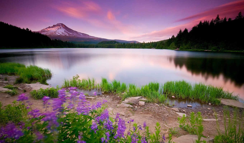 priroda, природы, cvety, озеро, небо, пейзаж, горы, трава,