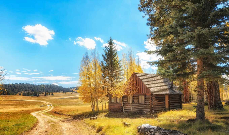 osen, pazlyi, les, broadleaf, fore, taiga, природа, mix, лес, домик, zimove