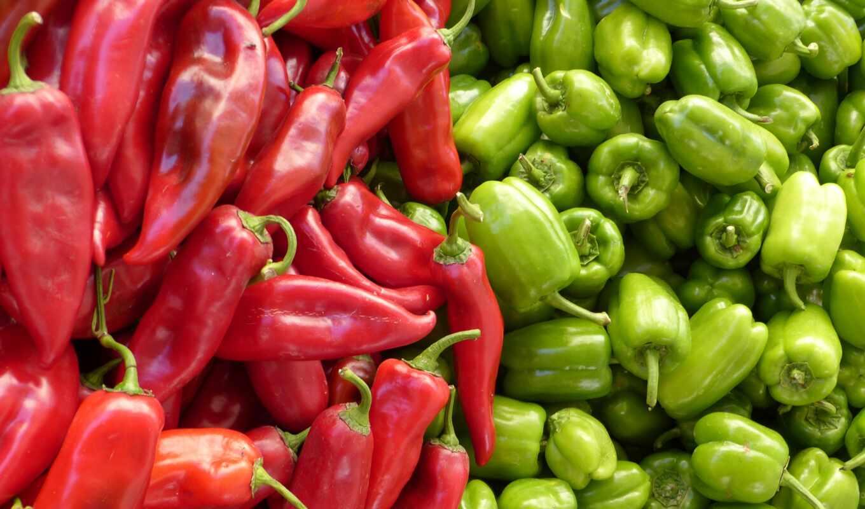 перец, alimento, bulgarian, con, verdura, зелёный