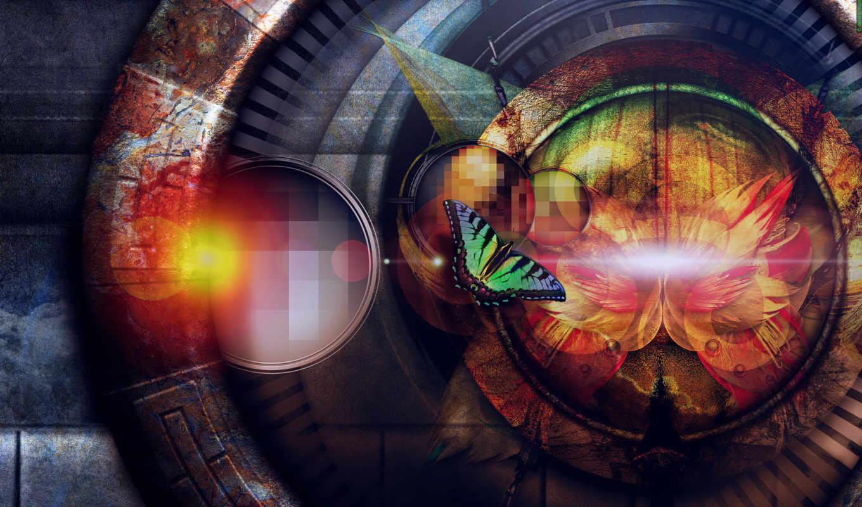 бабочки, круг, цвет, бабочка, abstract, artistic, high,