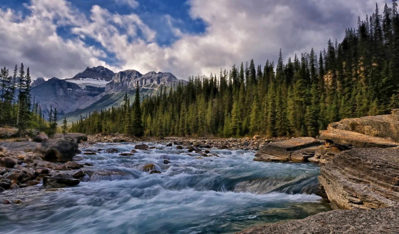 канада, река, природой, деревья, горы, природа, альберта,
