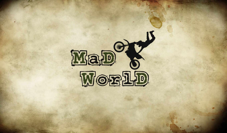 crazy, world, mad, надпись,