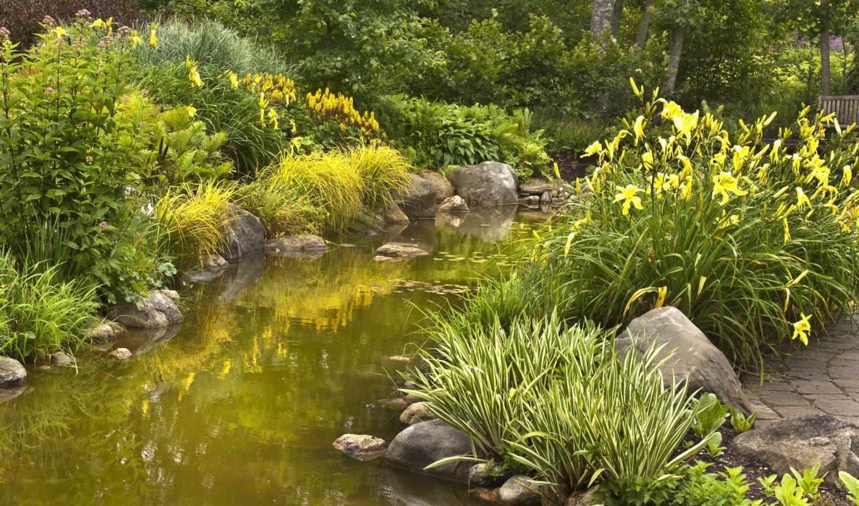 pulpit, природа, изображение, лес, река, kwiaty, oblaka, фото,
