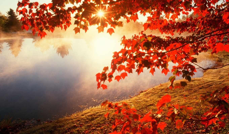 утро, но, осень, time,