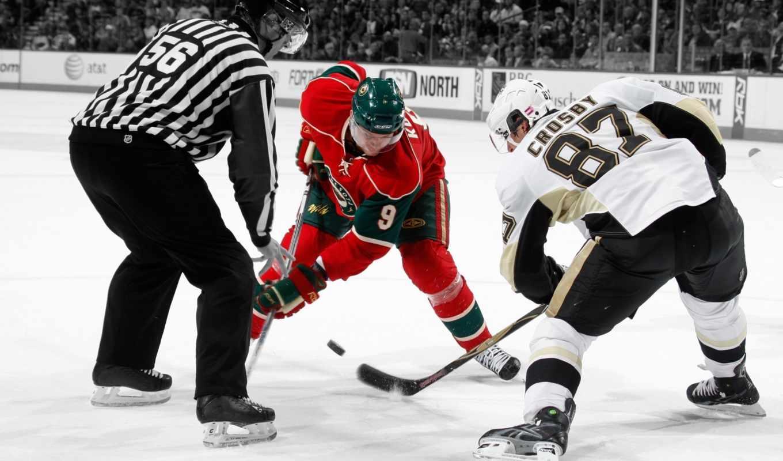 хоккей, спорт, nhl, шайба, лед, арбитр, каток, картинка,