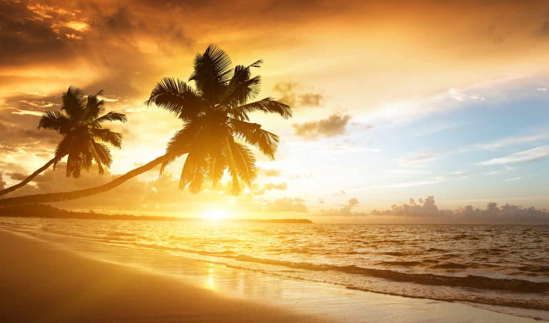 пляж, android, программы, google, play, amazing, закат,