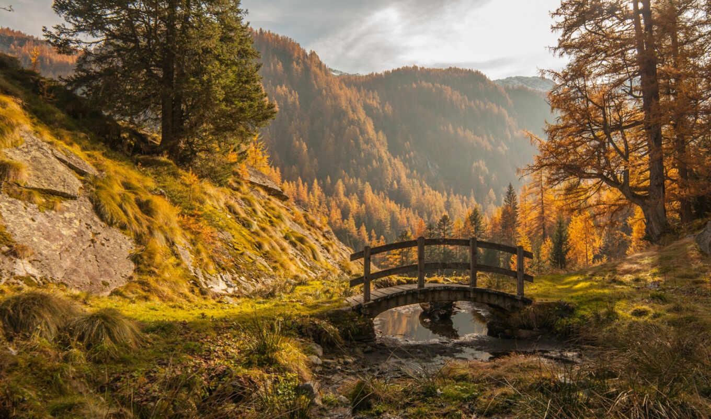над, осень, дерево, гора