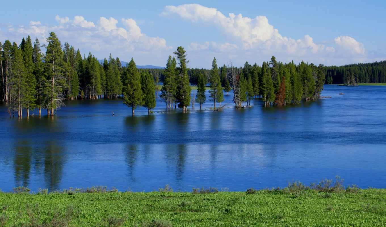 trees, небо, весна, потоп, озеро, река, тапети, taustapildid,