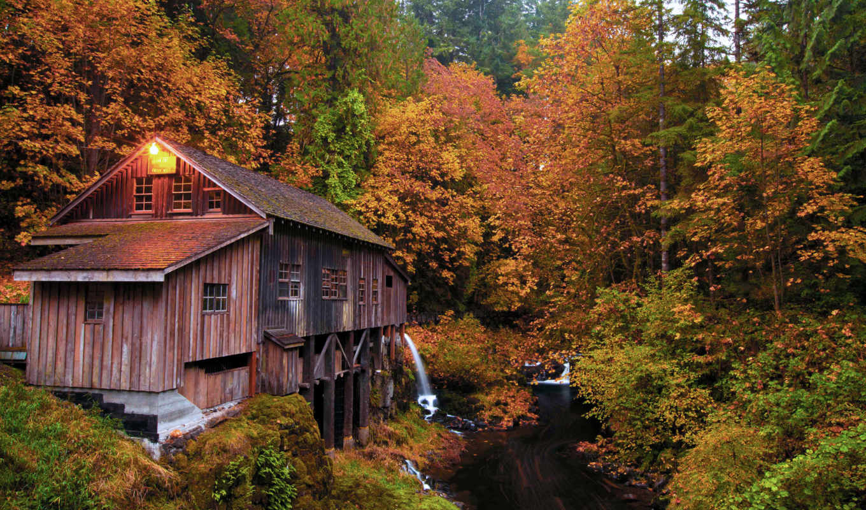 лес, осень, река, природа, house, лесу,