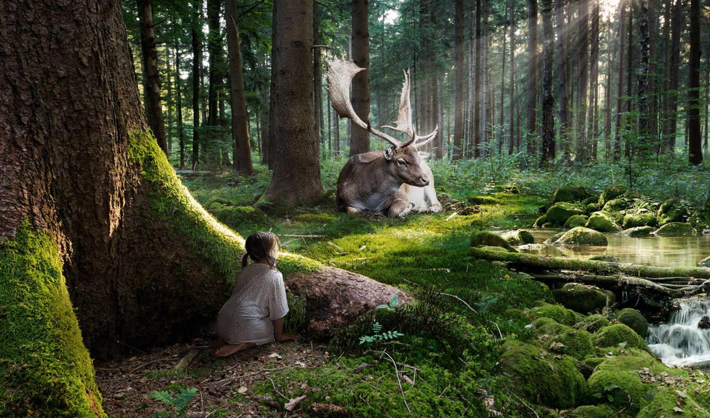 лес, resolution, фея, file, кб, size,