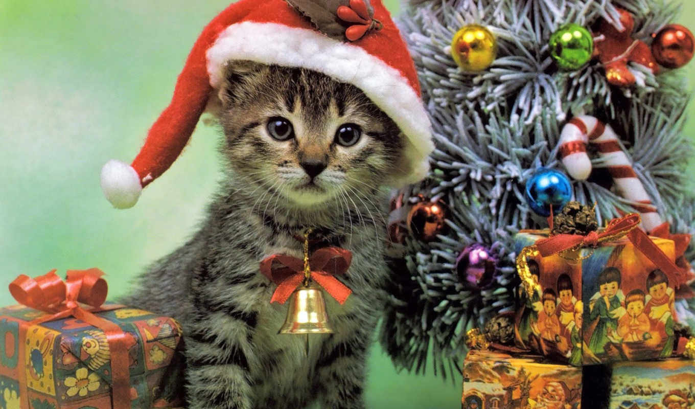 new, год, дерево, праздники, праздник,