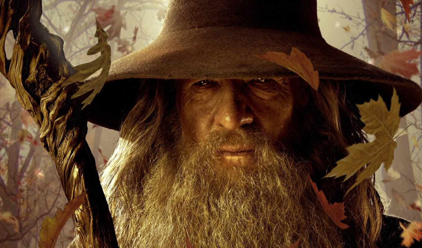 hobbit, earth, нежданное, middle, путешествие, lord, wizards, battle, rings, картинка, an, unexpected, journey,