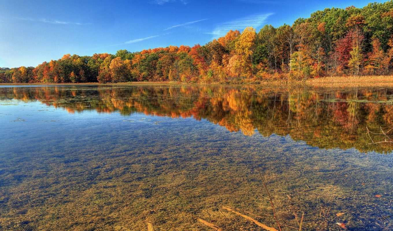 осень, природа, река, лес, прозрачность,