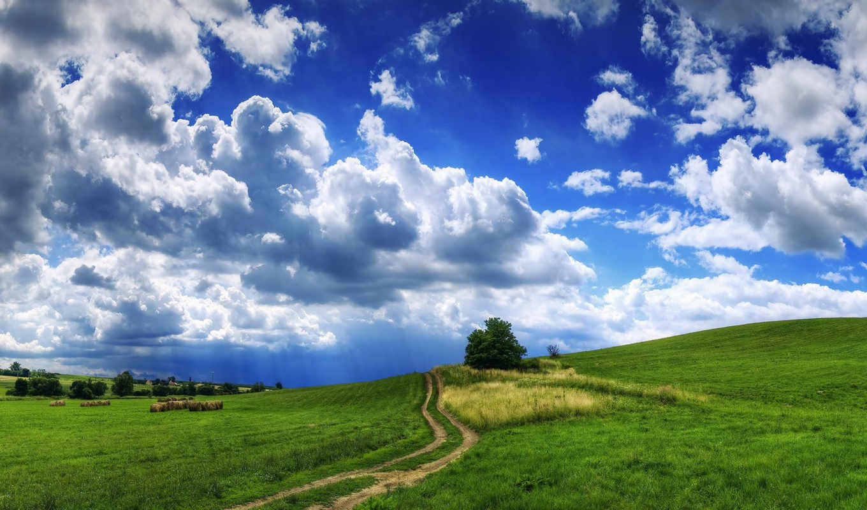 трава, облака, тучи, дерево, дорога, холмы, landscape, сено, природа,
